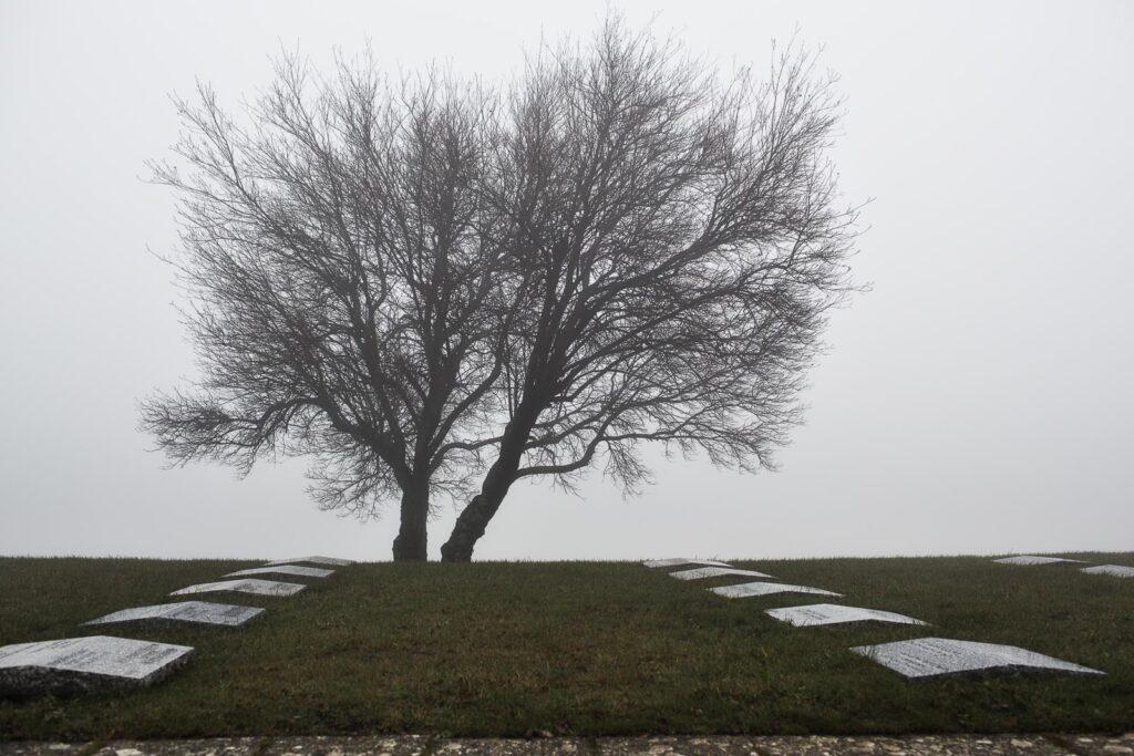 La natura e la memoria del cimitero militare germanico del Passo della Futa