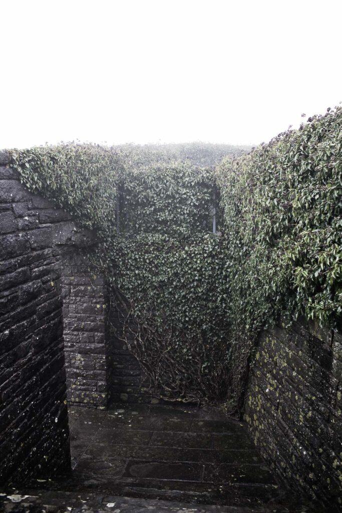 L'accesso alla cripta del cimitero militare germanico del Passo della Futa